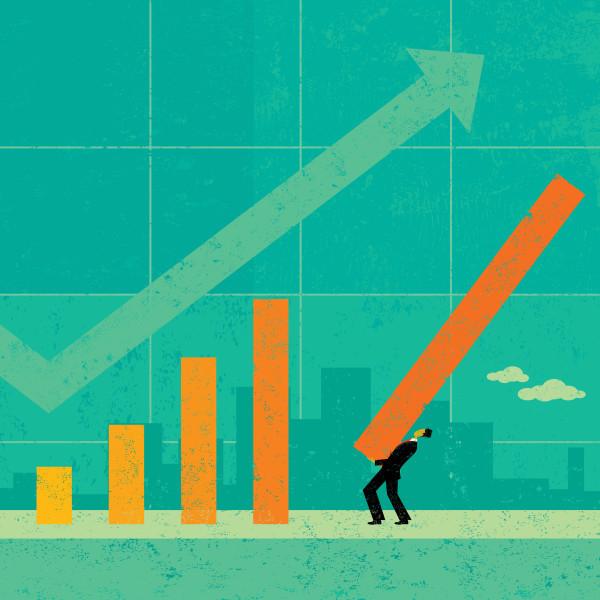 Blueberry Power Unternehmensberatung Umsatzsteigerung