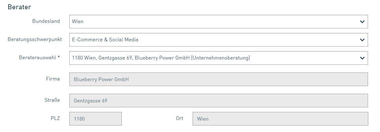 KMU Fokusberatung 3 Konstantin Heiller Blueberry Power CeCE