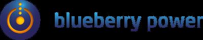 Blueberry Power Logo